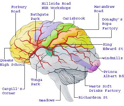 a South Dunedin of the mind